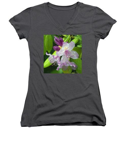 Blaze Women's V-Neck T-Shirt