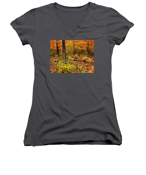 Blazing Forest Women's V-Neck (Athletic Fit)