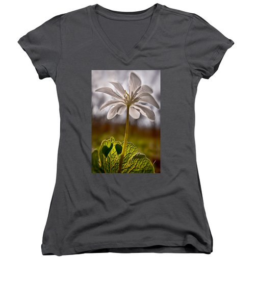 Bloodroot Women's V-Neck (Athletic Fit)