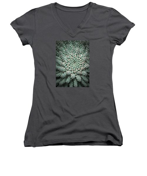 Blooming Geometry Women's V-Neck T-Shirt (Junior Cut) by Caitlyn  Grasso