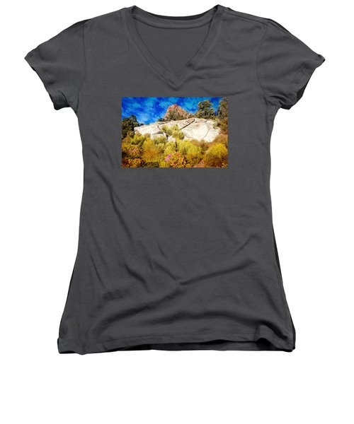 Blooming Nevada Desert Near Ely Women's V-Neck