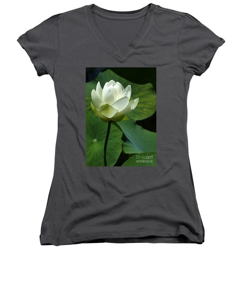Blooming White Lotus Women's V-Neck T-Shirt