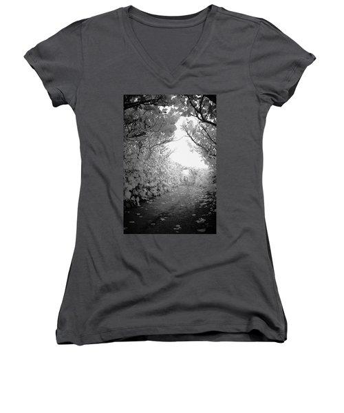 Blowing Rocks Jupiter Florida Women's V-Neck T-Shirt