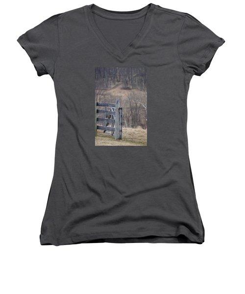 Women's V-Neck T-Shirt (Junior Cut) featuring the photograph Blue Bird by Heidi Poulin