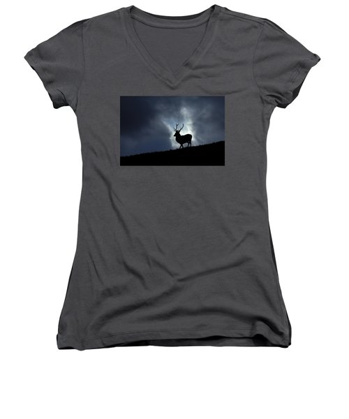 Blue Horizon Women's V-Neck
