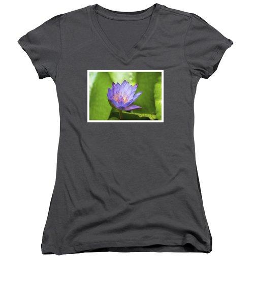 Blue Lotus Women's V-Neck