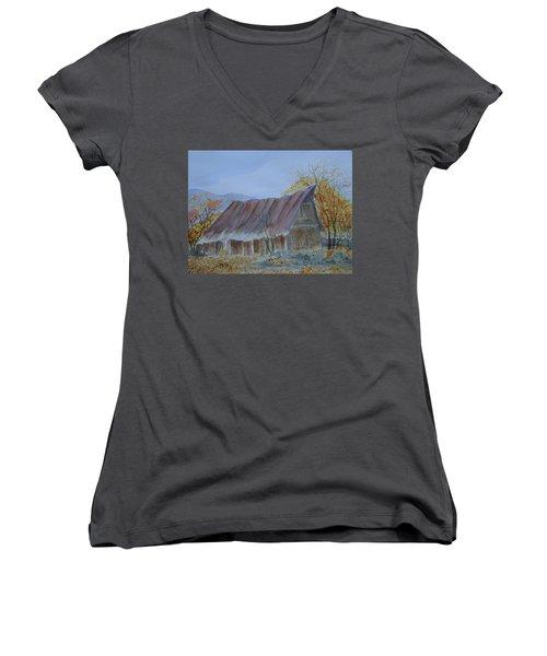 Blue Ridge Barn Women's V-Neck T-Shirt (Junior Cut) by Joel Deutsch