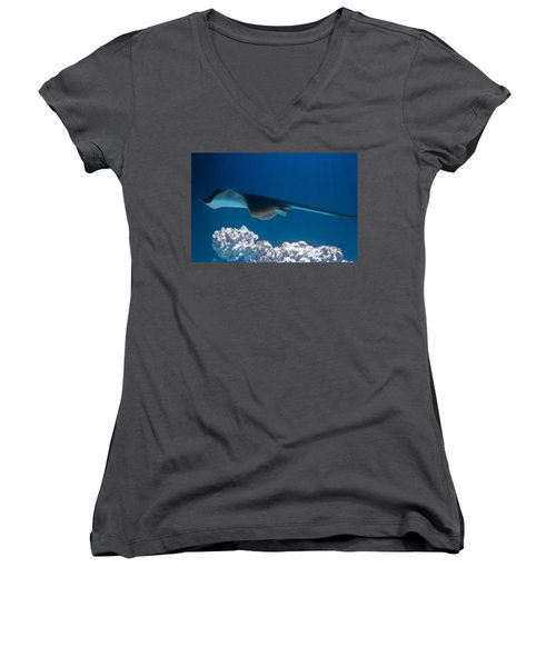 Women's V-Neck T-Shirt (Junior Cut) featuring the photograph Blue Spotted Fantail Ray by Eti Reid