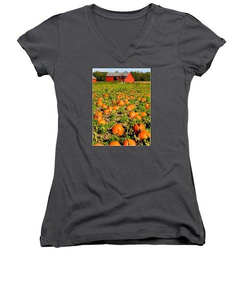 Bountiful Crop Women's V-Neck T-Shirt