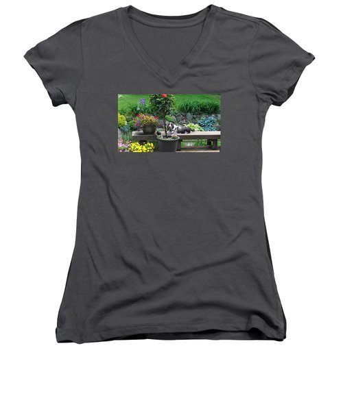 Bowie In The Garden Women's V-Neck (Athletic Fit)