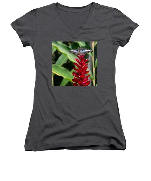 Brilliant Butterfly Women's V-Neck