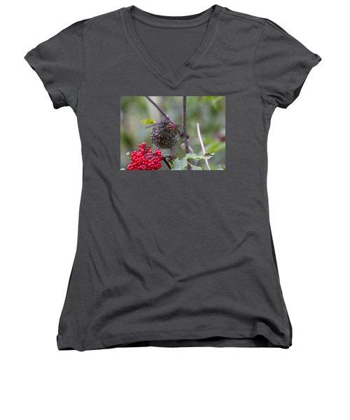 Brunch Women's V-Neck T-Shirt