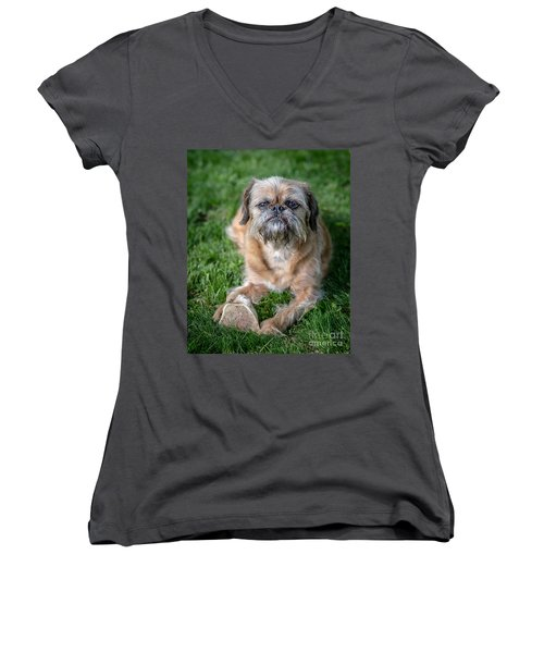 Brussels Griffon Women's V-Neck T-Shirt (Junior Cut) by Edward Fielding