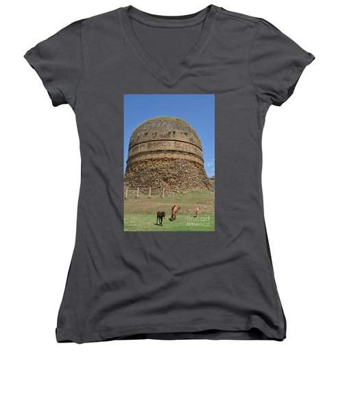 Buddhist Religious Stupa Horse And Mules Swat Valley Pakistan Women's V-Neck T-Shirt