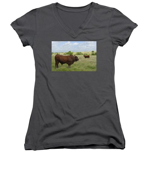 Women's V-Neck T-Shirt (Junior Cut) featuring the photograph Bull And Cattle by Charles Beeler