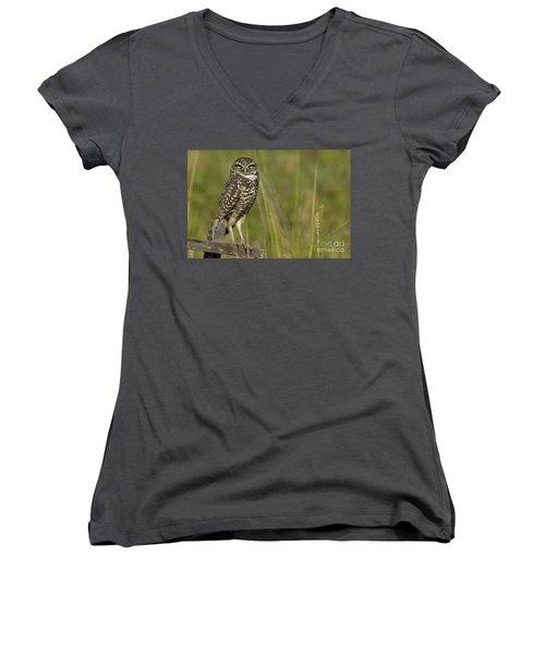 Burrowing Owl Stare Women's V-Neck T-Shirt (Junior Cut) by Meg Rousher