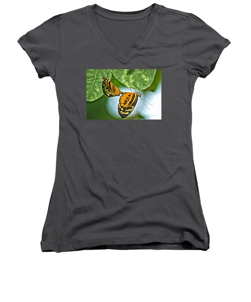 Women's V-Neck T-Shirt (Junior Cut) featuring the photograph Butterflies Mating by Thomas Woolworth