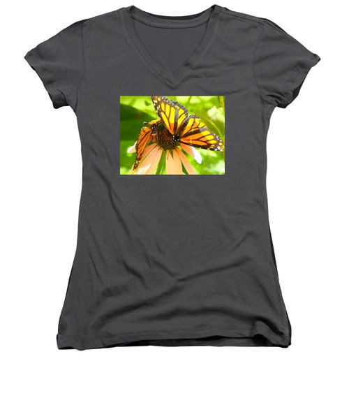 Butterfly And Friend Women's V-Neck (Athletic Fit)