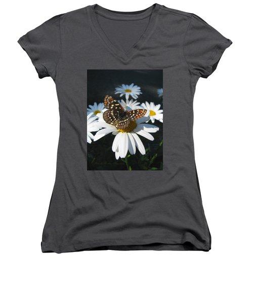 Butterfly And Shasta Daisy - My Spring Garden Women's V-Neck T-Shirt (Junior Cut) by Brooks Garten Hauschild