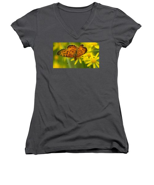 Women's V-Neck T-Shirt (Junior Cut) featuring the photograph Butterfly by James Peterson