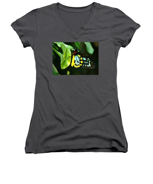Butterfly On Leaf Women's V-Neck T-Shirt