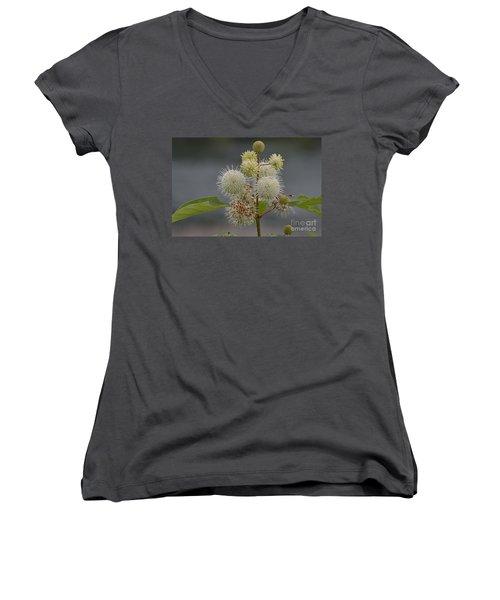 Buttonbush Women's V-Neck