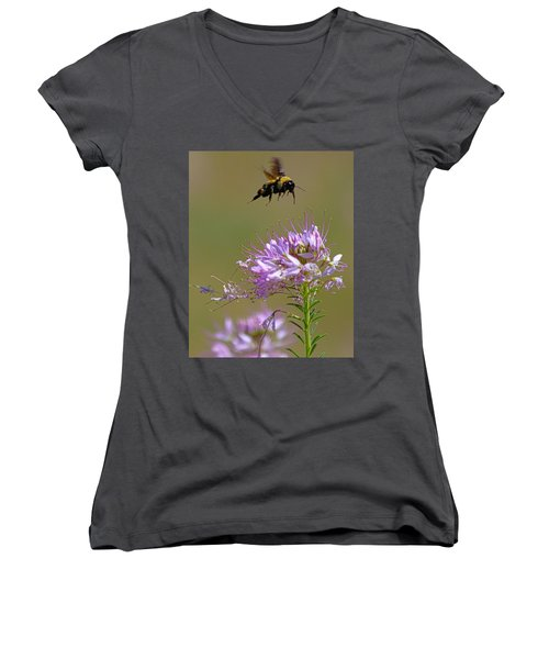 Buzzing Around Women's V-Neck (Athletic Fit)