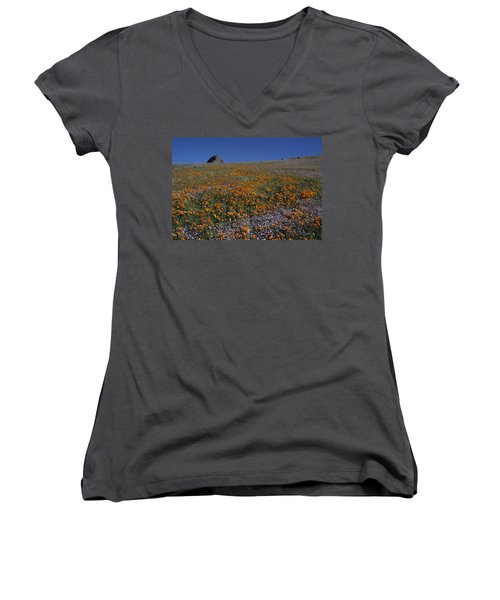 California Gold Poppies And Baby Blue Eyes Women's V-Neck T-Shirt (Junior Cut) by Susan Rovira