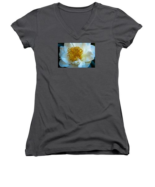 Women's V-Neck T-Shirt (Junior Cut) featuring the photograph Camellia by Julie Andel