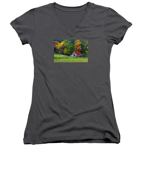 Candy Mountain Women's V-Neck (Athletic Fit)
