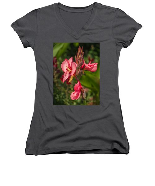 Canna Lily Women's V-Neck T-Shirt