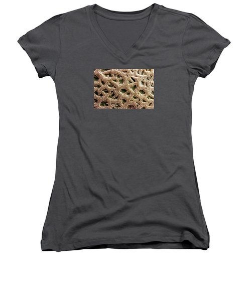 Women's V-Neck T-Shirt (Junior Cut) featuring the photograph Canteloupe Macro by Sandra Foster
