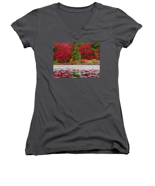 Cape Cod Autumn Women's V-Neck T-Shirt (Junior Cut) by Dianne Cowen