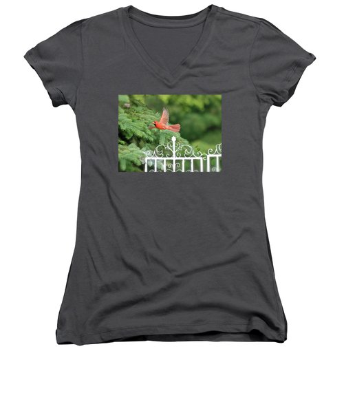 Women's V-Neck T-Shirt (Junior Cut) featuring the photograph Cardinal Time To Soar by Thomas Woolworth