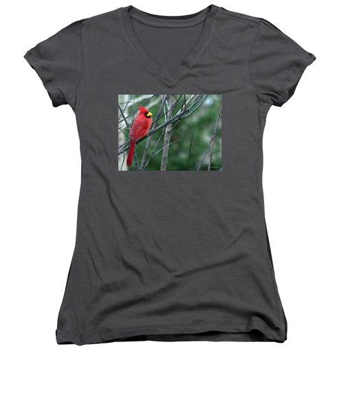 Cardinal West Women's V-Neck T-Shirt (Junior Cut) by Jeff Kolker