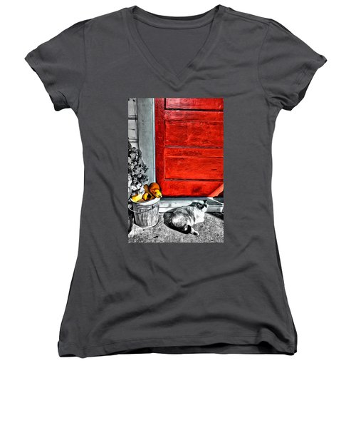 Cat By The Red Door Women's V-Neck (Athletic Fit)