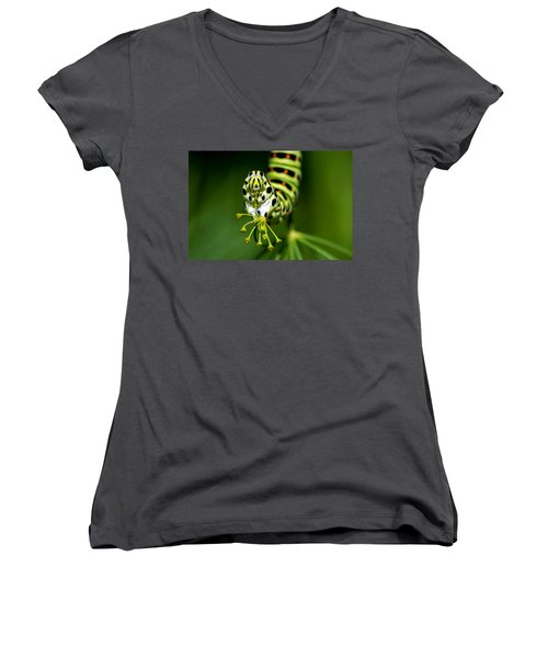 Caterpillar Of The Old World Swallowtail Women's V-Neck T-Shirt (Junior Cut) by Torbjorn Swenelius