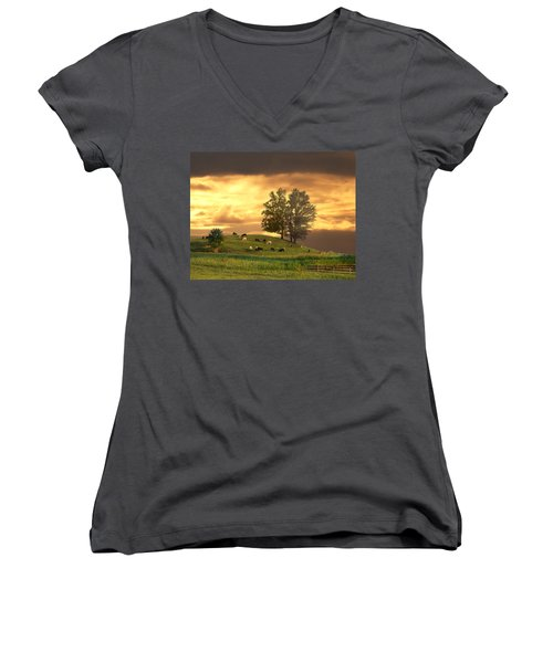 Cattle On A Hill Women's V-Neck T-Shirt (Junior Cut) by Randall Branham