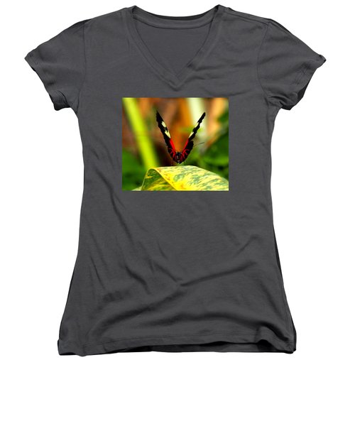 Women's V-Neck T-Shirt (Junior Cut) featuring the photograph Cattleheart Butterfly  by Amy McDaniel