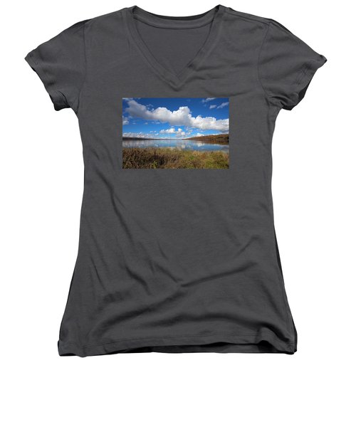 Women's V-Neck T-Shirt (Junior Cut) featuring the photograph Cayuga Lake In Colorful Fall Ithaca New York II by Paul Ge