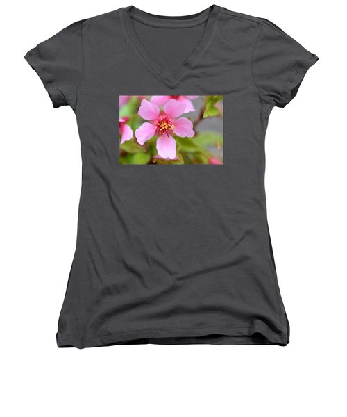 Cherry Blossom Women's V-Neck (Athletic Fit)