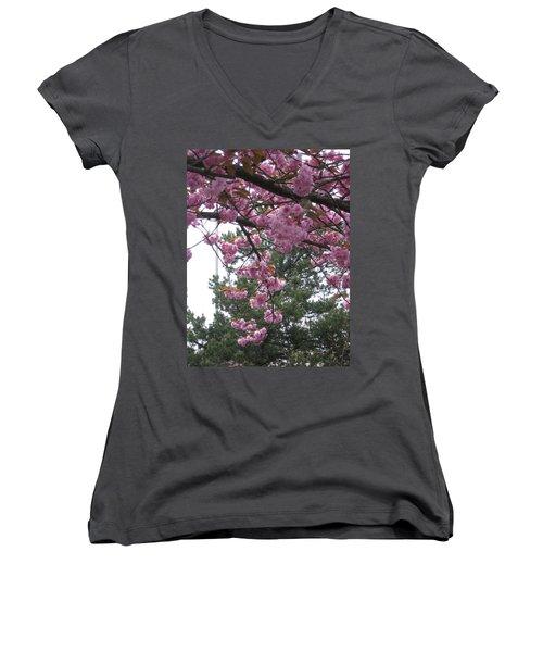 Cherry Blossoms 1 Women's V-Neck T-Shirt (Junior Cut) by David Trotter