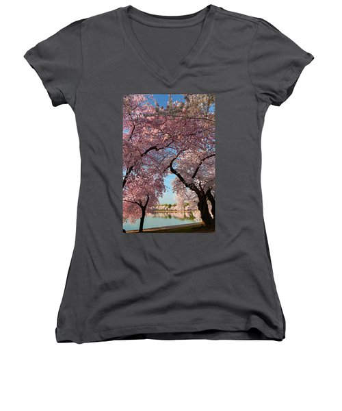 Cherry Blossoms 2013 - 024 Women's V-Neck