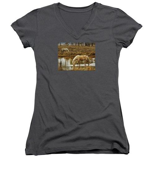 Chincoteague Gold Women's V-Neck T-Shirt (Junior Cut) by Joan Davis