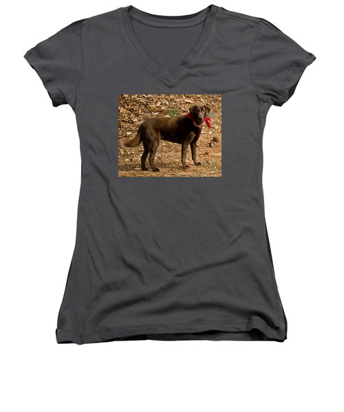 Women's V-Neck T-Shirt (Junior Cut) featuring the photograph Chocolate Lab by Robert L Jackson