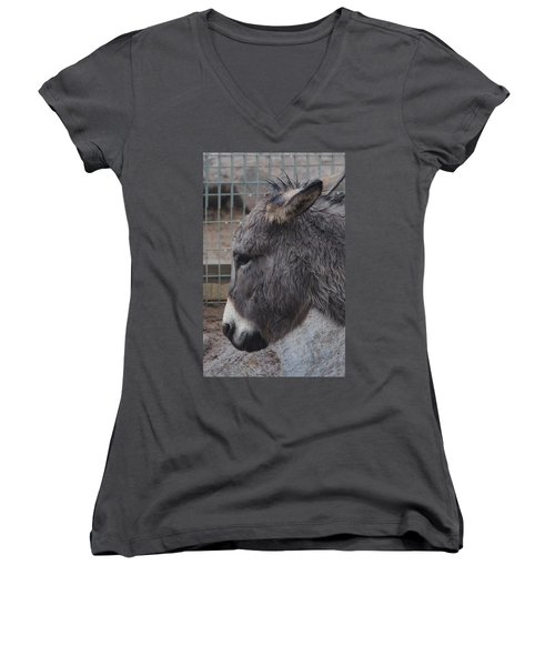 Christmas Donkey Women's V-Neck