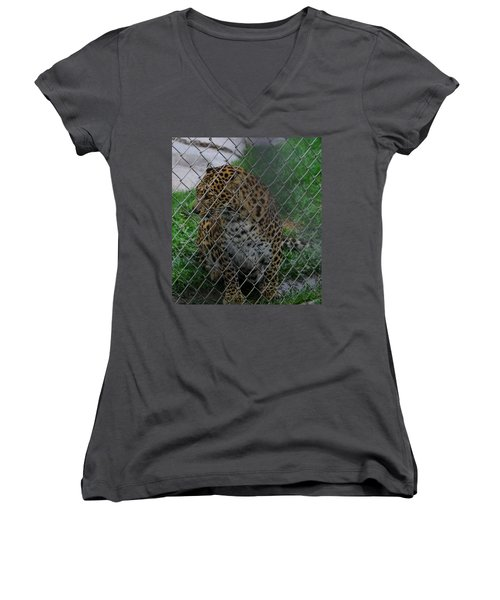 Christmas Leopard I Women's V-Neck