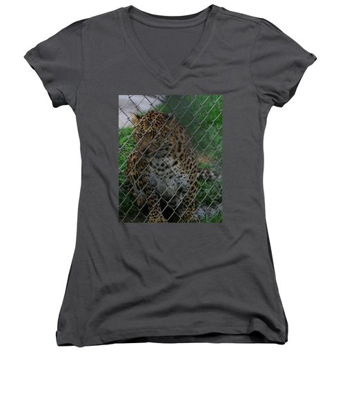 Christmas Leopard II Women's V-Neck