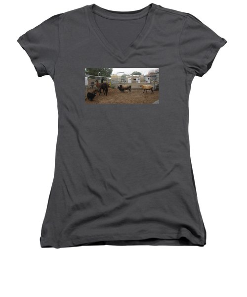 Christmas Petting Farm Women's V-Neck
