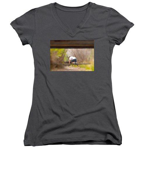 Climb On Over Women's V-Neck T-Shirt